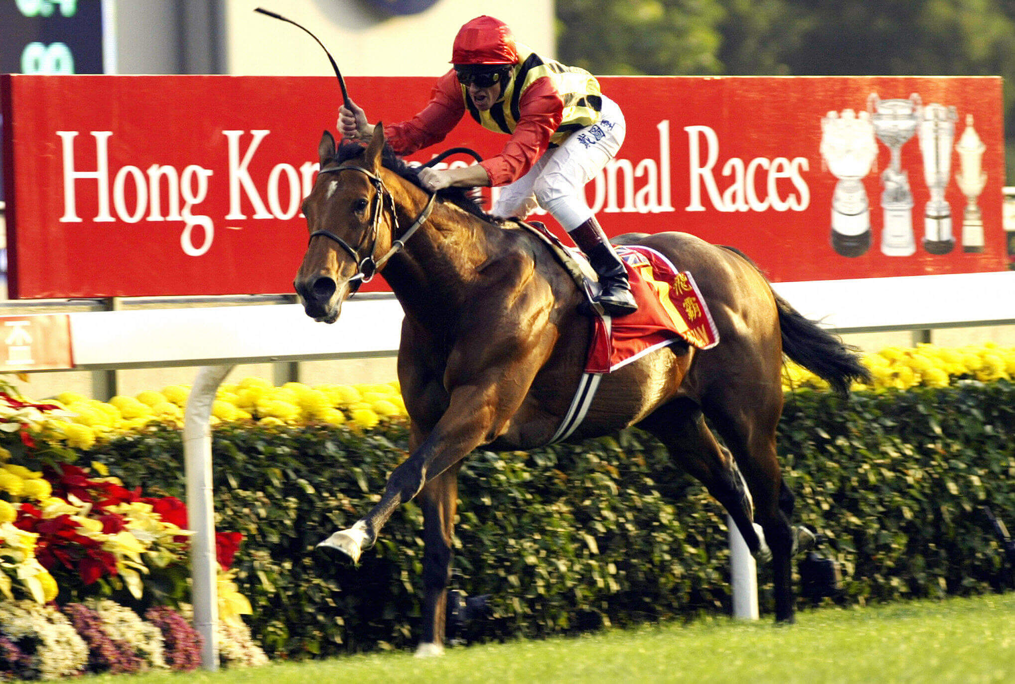 Frankie Dettori win the Hong Kong Cup on