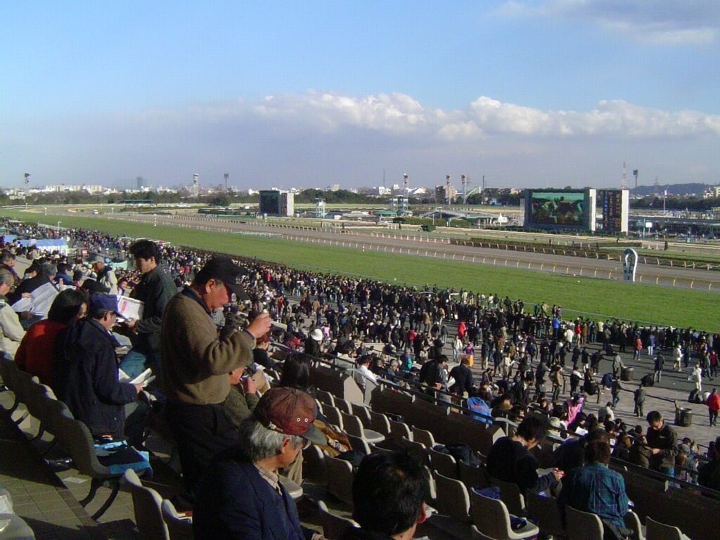 Tokyo_Racecourse_4