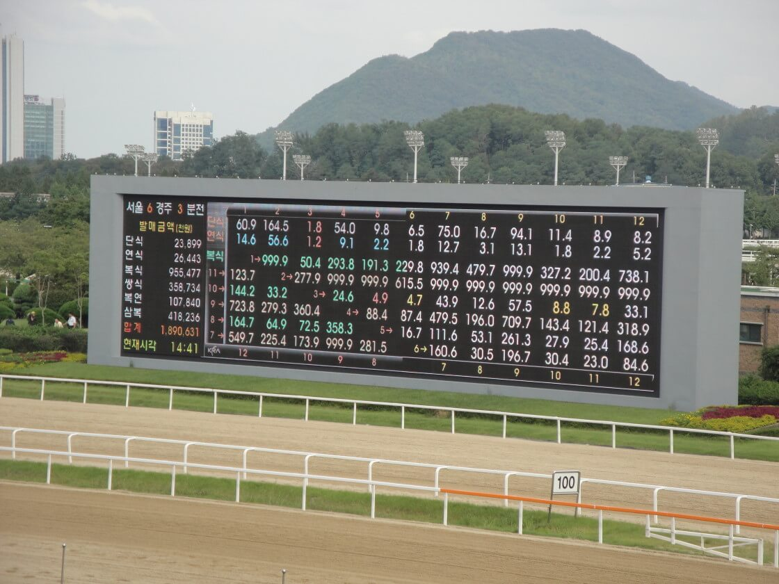 seoul-racecourse-odds-board